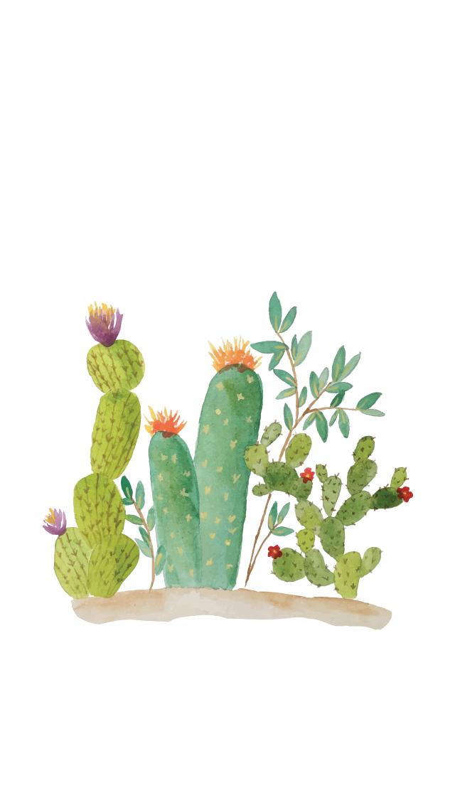 Cactus Wallpaper - 5